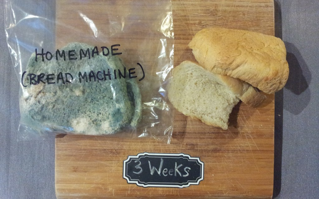 The Great White Bread Experiment Final Results